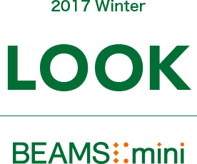 2017 AUTMUN LOOK BEAMS mini