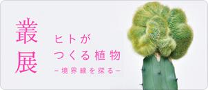 叢 – Qusamura 展覧会 「ヒトがつくる植物 〜境界線を探る〜」