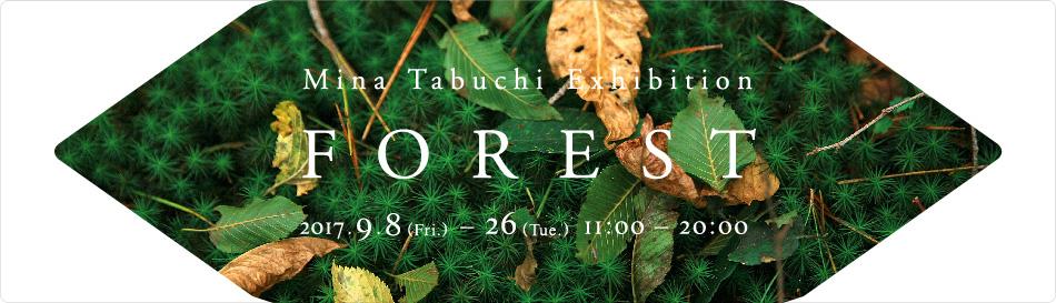田淵三菜の展覧会『FOREST』