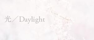 中村紋子,光/Daylight