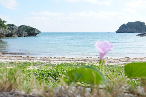 沖縄のサウンドトラック写真1