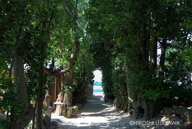 沖縄の原点写真1